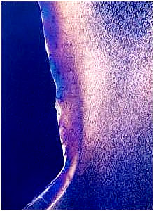 Feinkristallines Gefüge eines spritzgegossenen Zahnrades aus Polyamid
